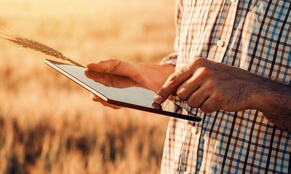 Farmer using tablet in field